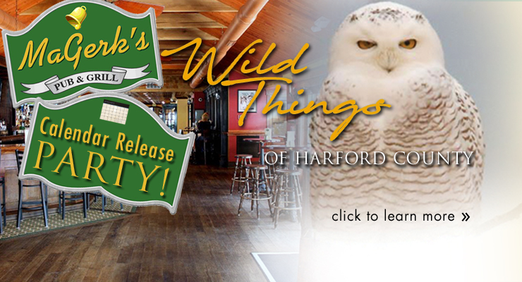 Harfords Heart Wild Things